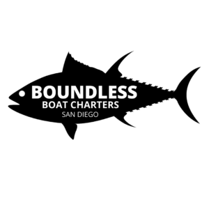 BOUNDLESS-6
